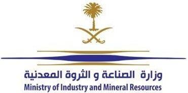 دورات تدريبية مجانية عن بعد لدى وزارة الصناعة والثروة المعدنية